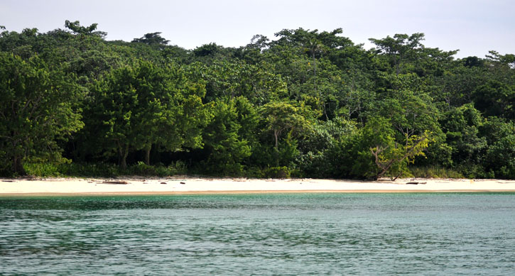 Post image for Isla Contadora, Panama Day 4-Survivor, Snorkeling and the Whales