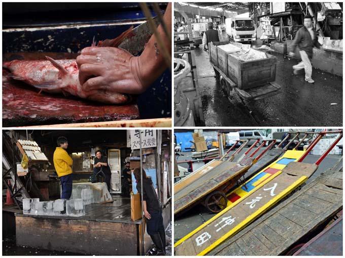 Tsukiji Market Scenes