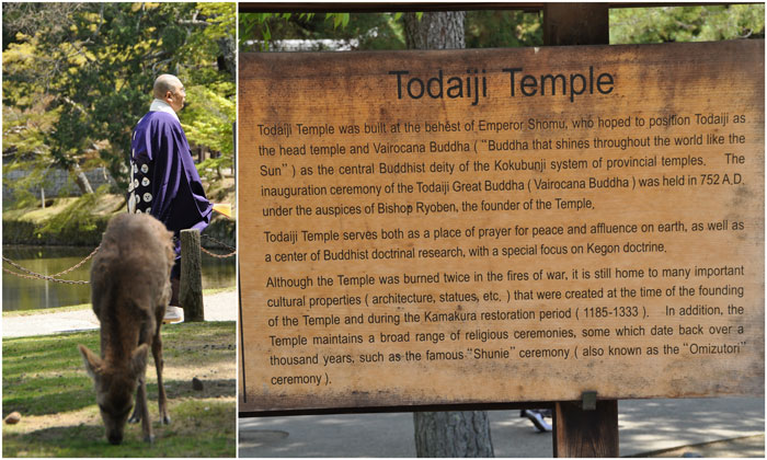 Todaiji Temple Sign