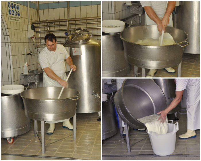 Making buffalo mozzarella at Barlotti