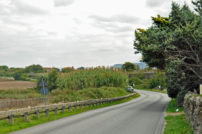 Road leading away from Barlotti farm