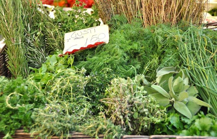 Campo di Fiori Herbs