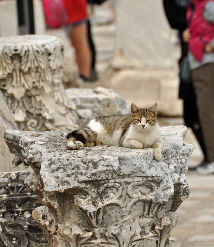 A Visit To The Roman Ruins Of Ephesus