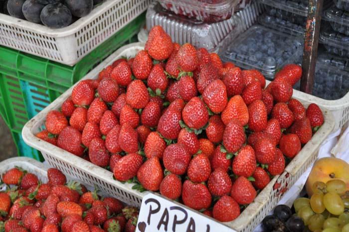 Lima Mercado (14)