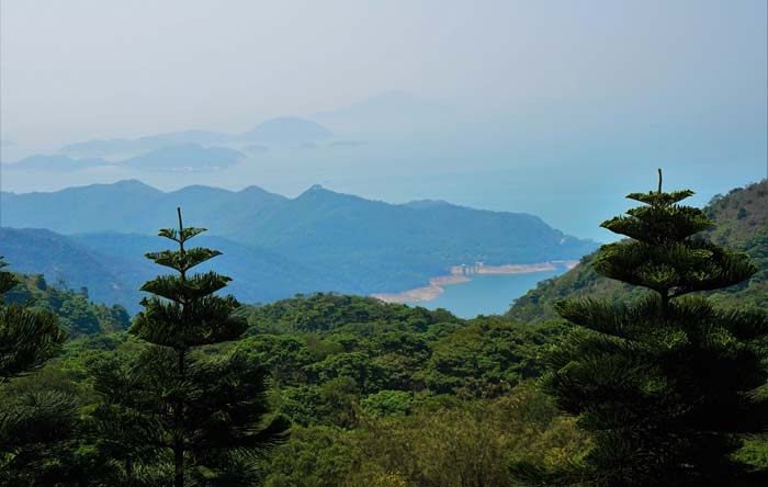 View from the top of Tian Tan Buddha
