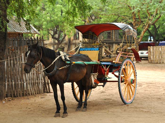 Bagan Horse and Cart