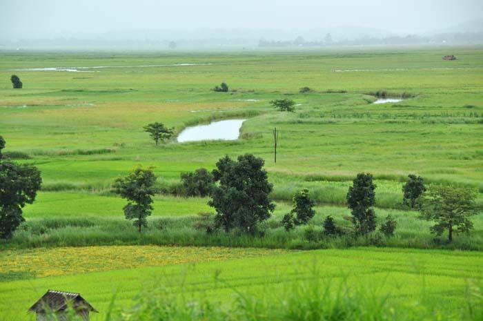 Kakku Myanmar (Burma) (19)