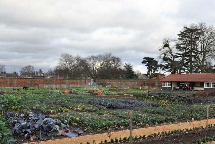 Hampton Court Kitchen Garden