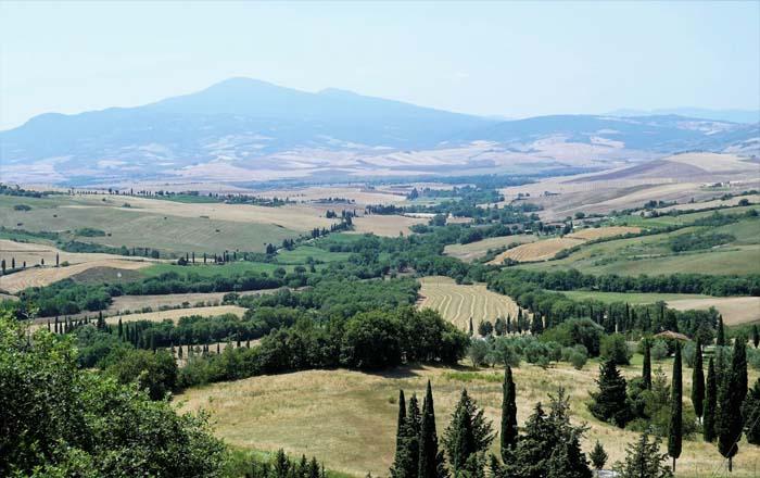 View from Il Casale Farm